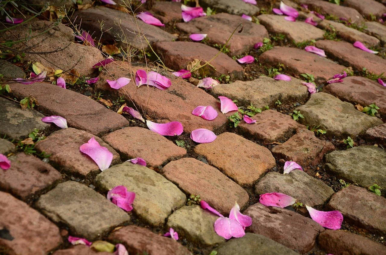 UK best rated paving contractors in Countesthorpe, LE8